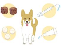 フィラリア症は月一回の投薬で予防できます。